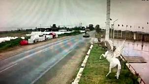 Tire'de otomobil motosiklete çarptı: 1 yaralı