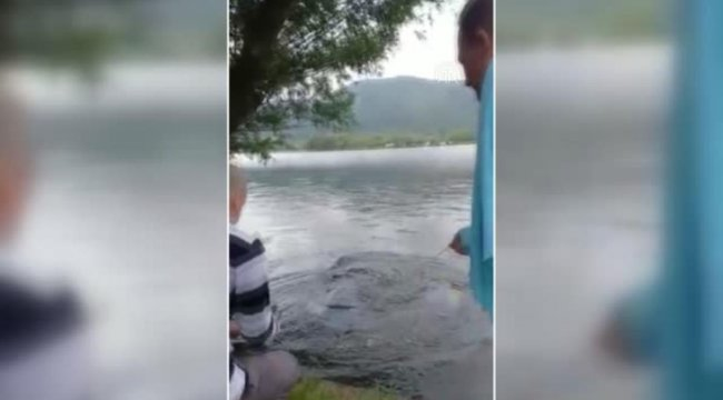 Amatör balıkçı Gölcük Gölü'nde 55 kiloluk yayın balığı yakaladı