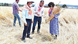 Karakılçık tohumunun ilk hasadı yapıldı