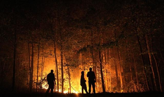 Rusya, orman yangınlarıyla mücadeleyi sürdürüyor