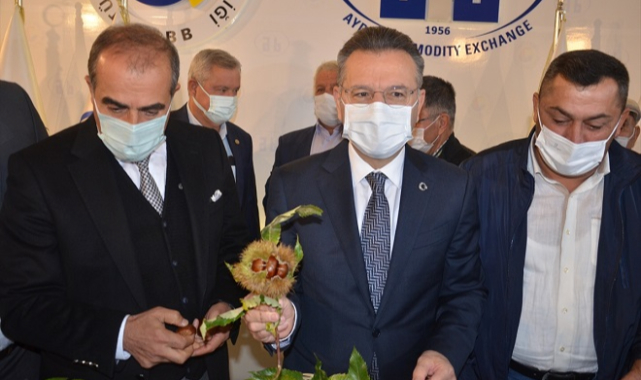 Aydın'da sezonun ilk kestanesi kilogramı 120 liradan satıldı