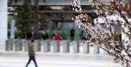 Baharın tadını çıkarmak için bu önerileri dikkate alın