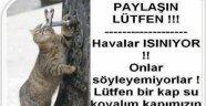 İzmir Veteriner Hekimleri Odası'ndan uyarı