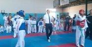 Karabağlar HEM Taekwondo turnuvasında 27 Madalya...