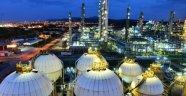 Petrokimyada İlk Risk Yönetimi Sistemi